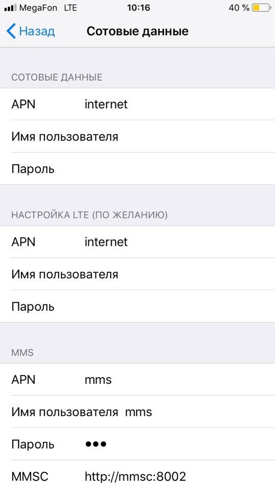 Параметры сотового оператора в айфоне